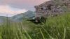 Nogovan Highland Rangers (17)